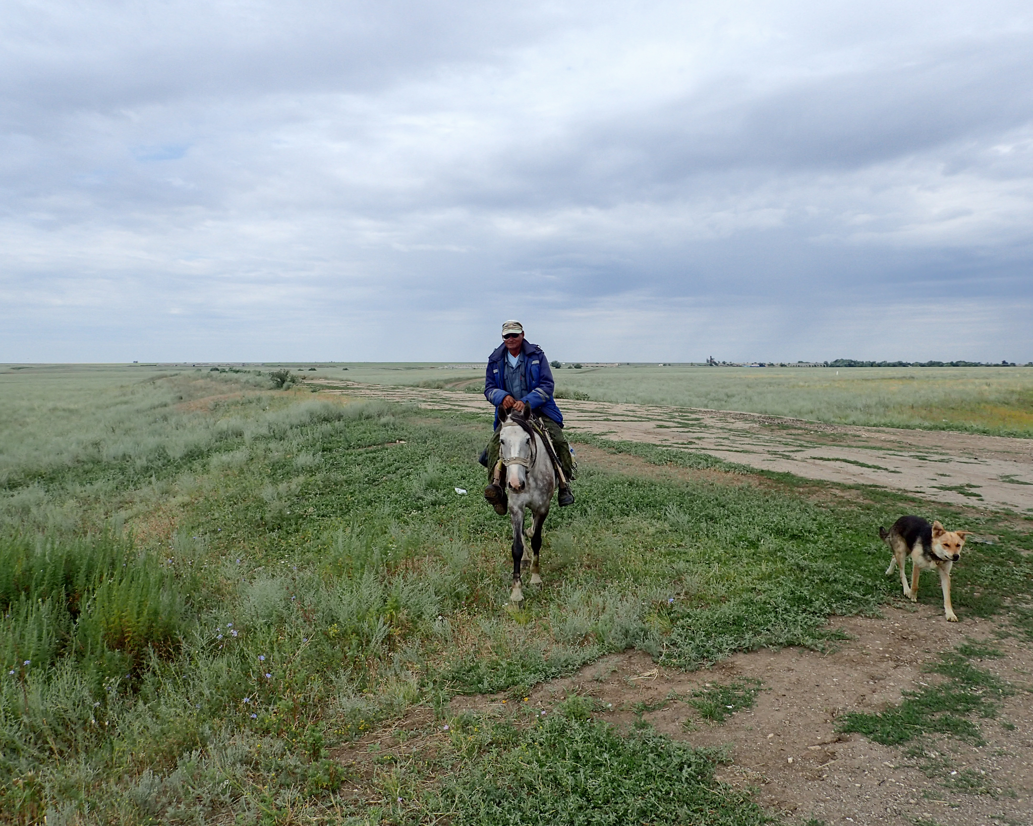 A friendly herdsman and dog