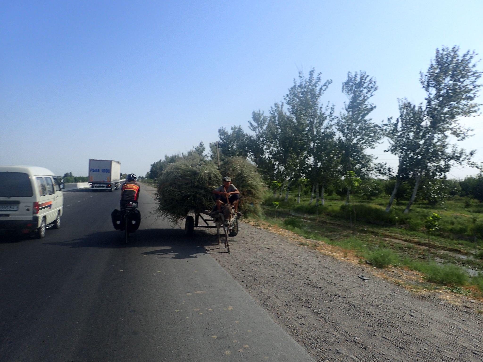 Hay-cart probably on the wrong side of the road. Not bothered!
