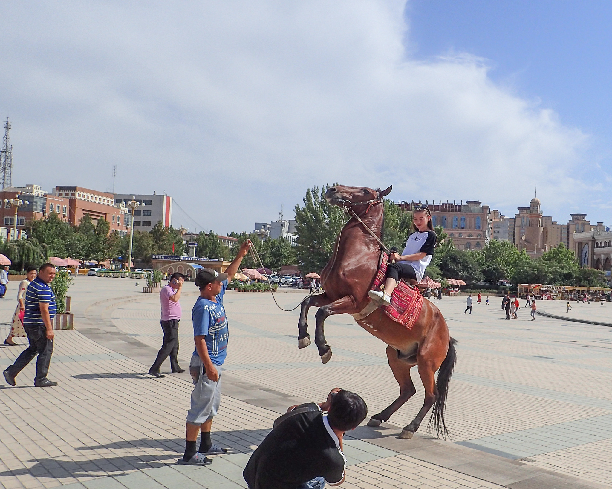 Horse in town