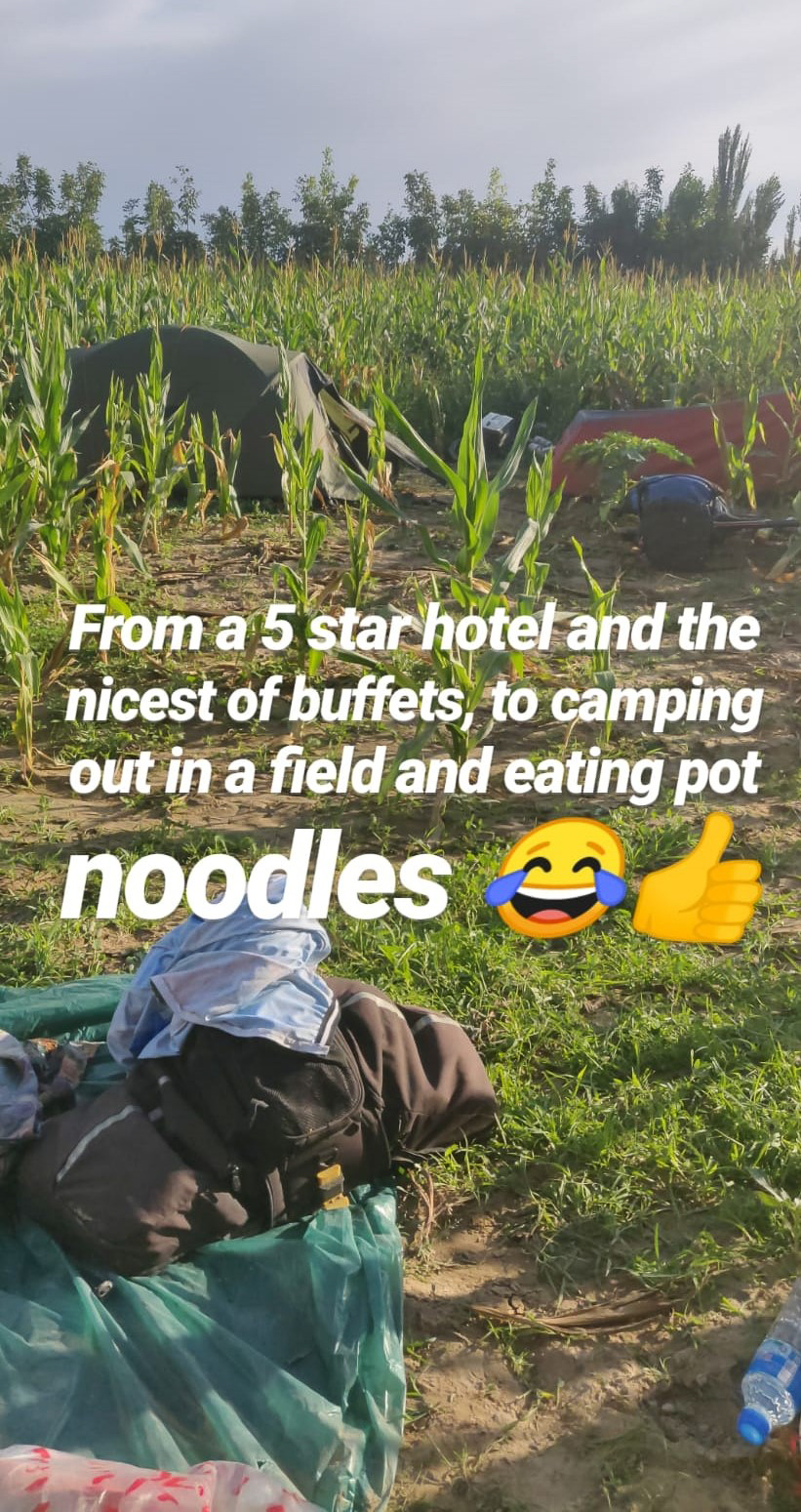 Camping in a Maize field