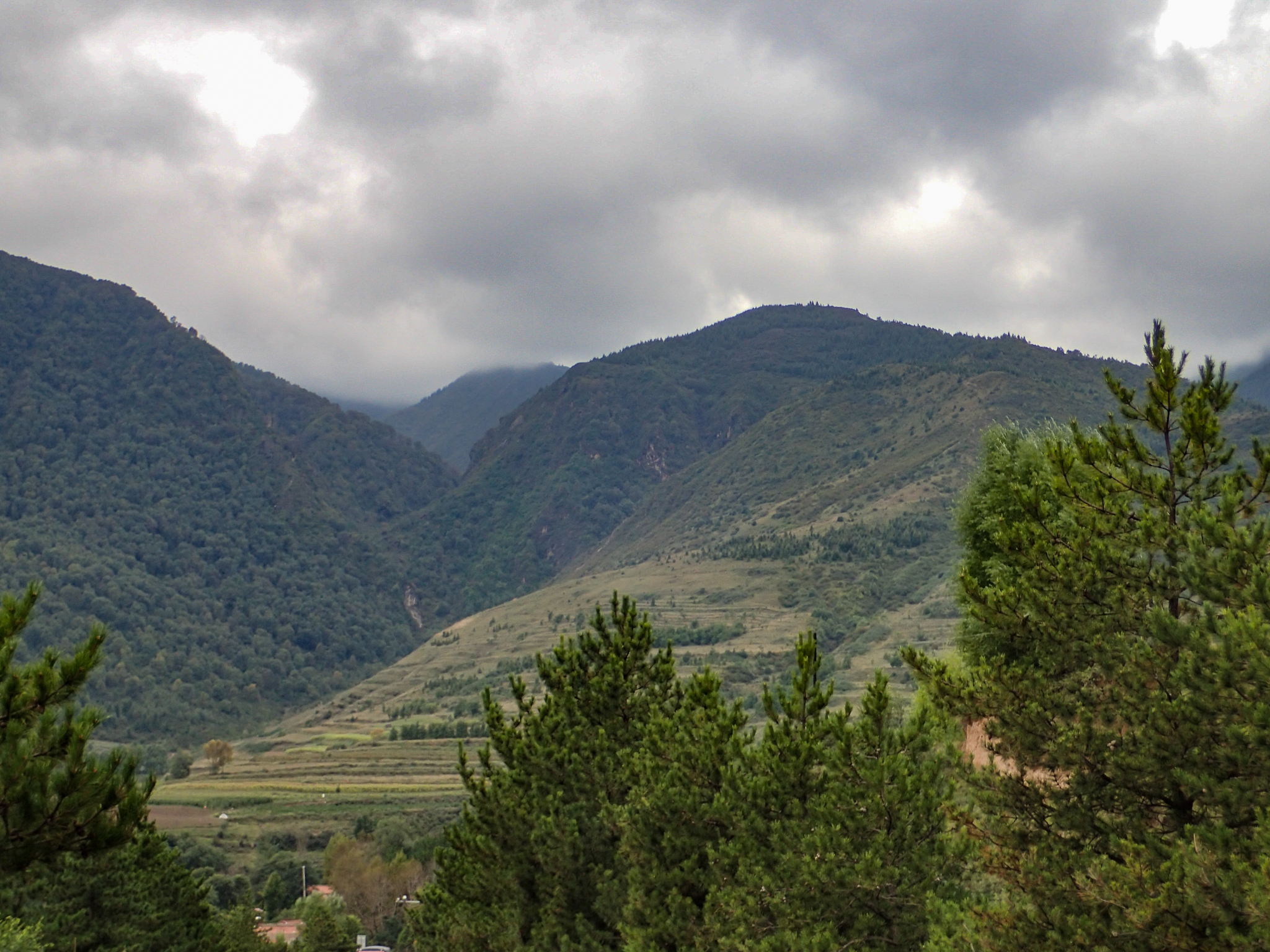 Mountains and terraced farming