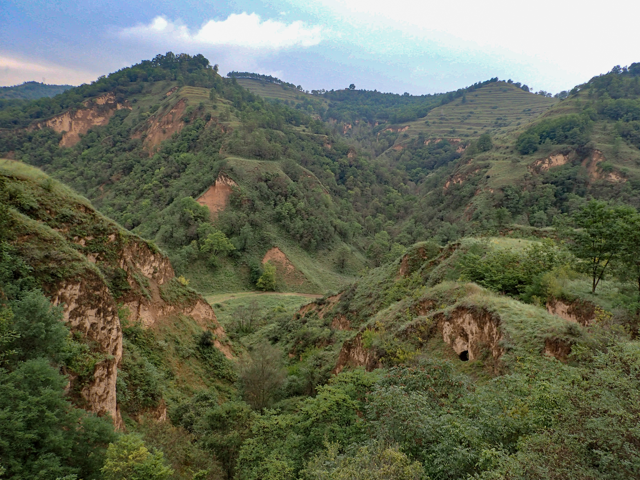 Fantastical countryside