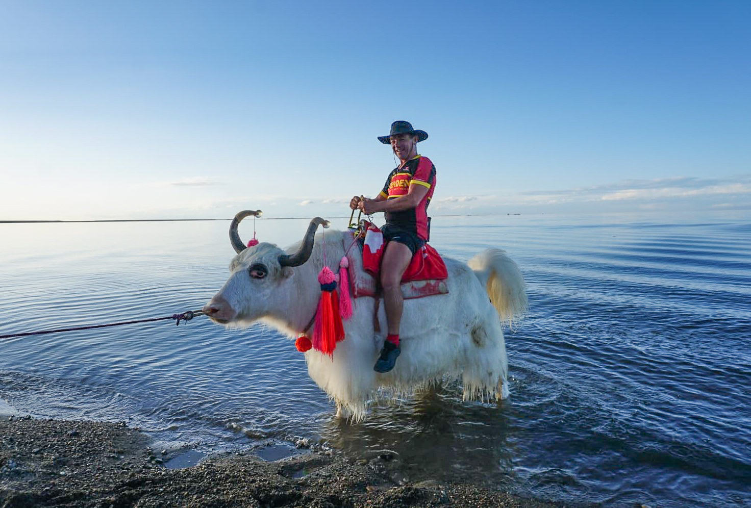 Dale riding a Yak in a lake