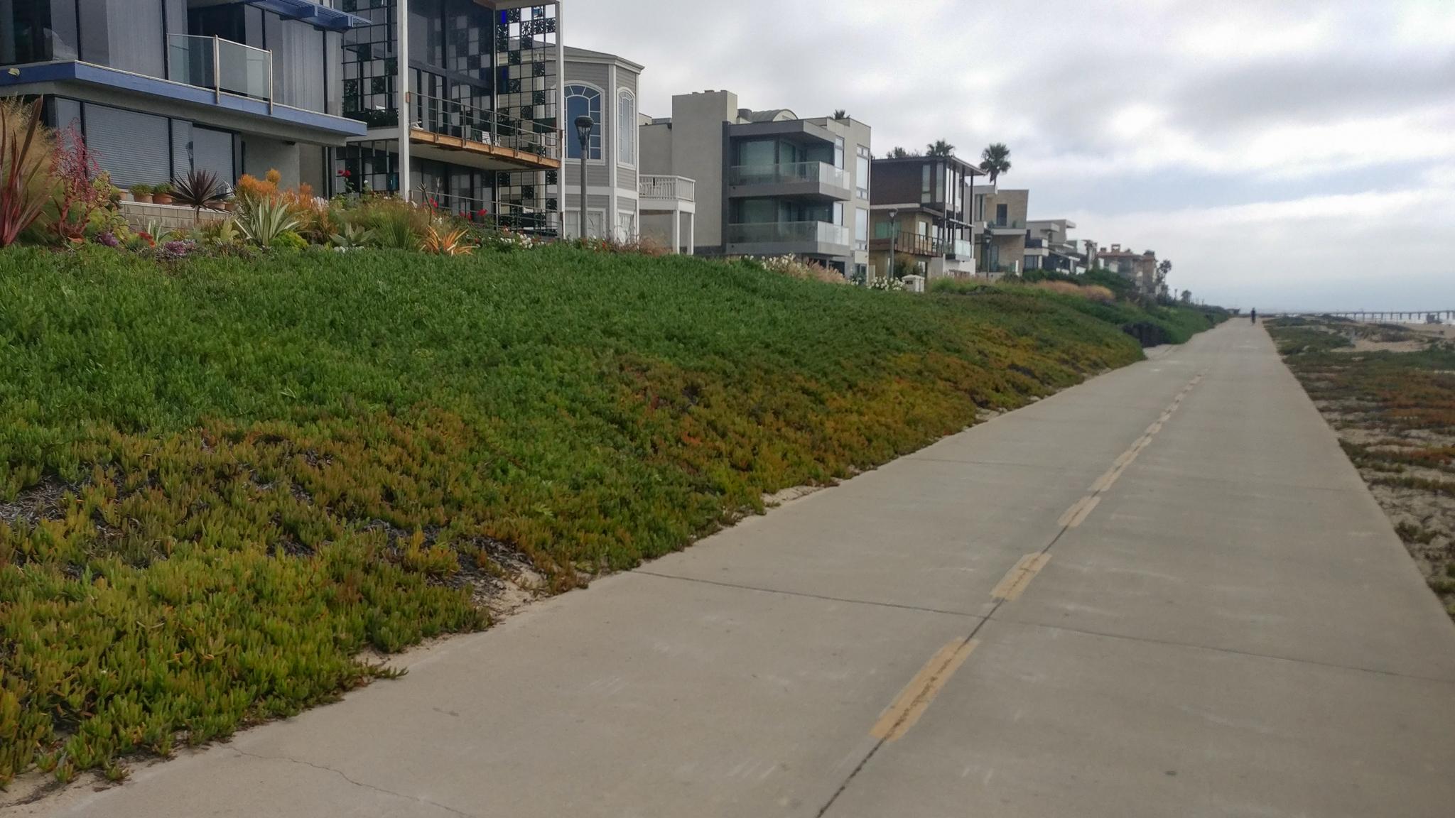 Beachfront Houses