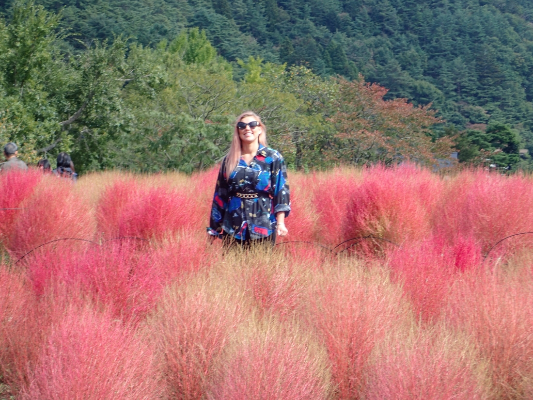 Charlee with Fireweed or Burning Bush (Kochia scoparia) a pink grass