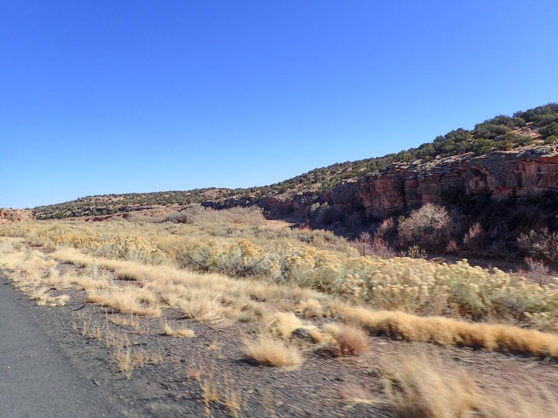 Scrubland desert