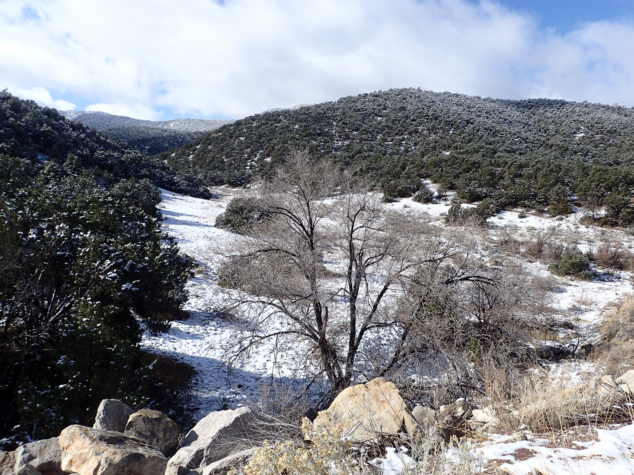 Snow in the hills