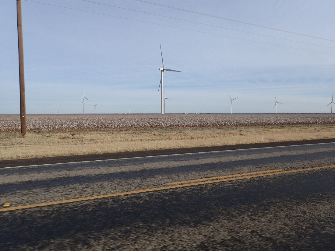 Cotton fields and wind-turbines in West Texas