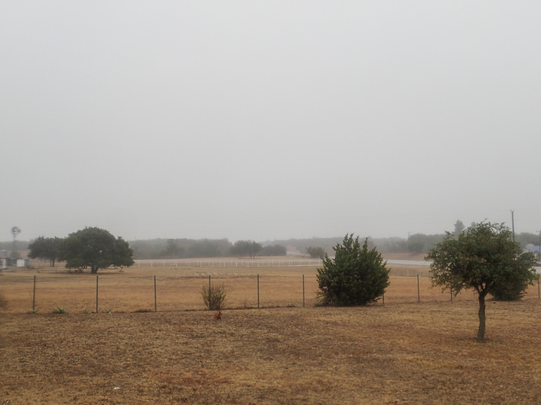 Overcast and damp, Texas