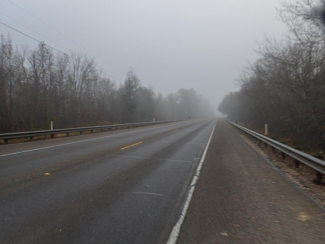 Foggy day in Louisiana