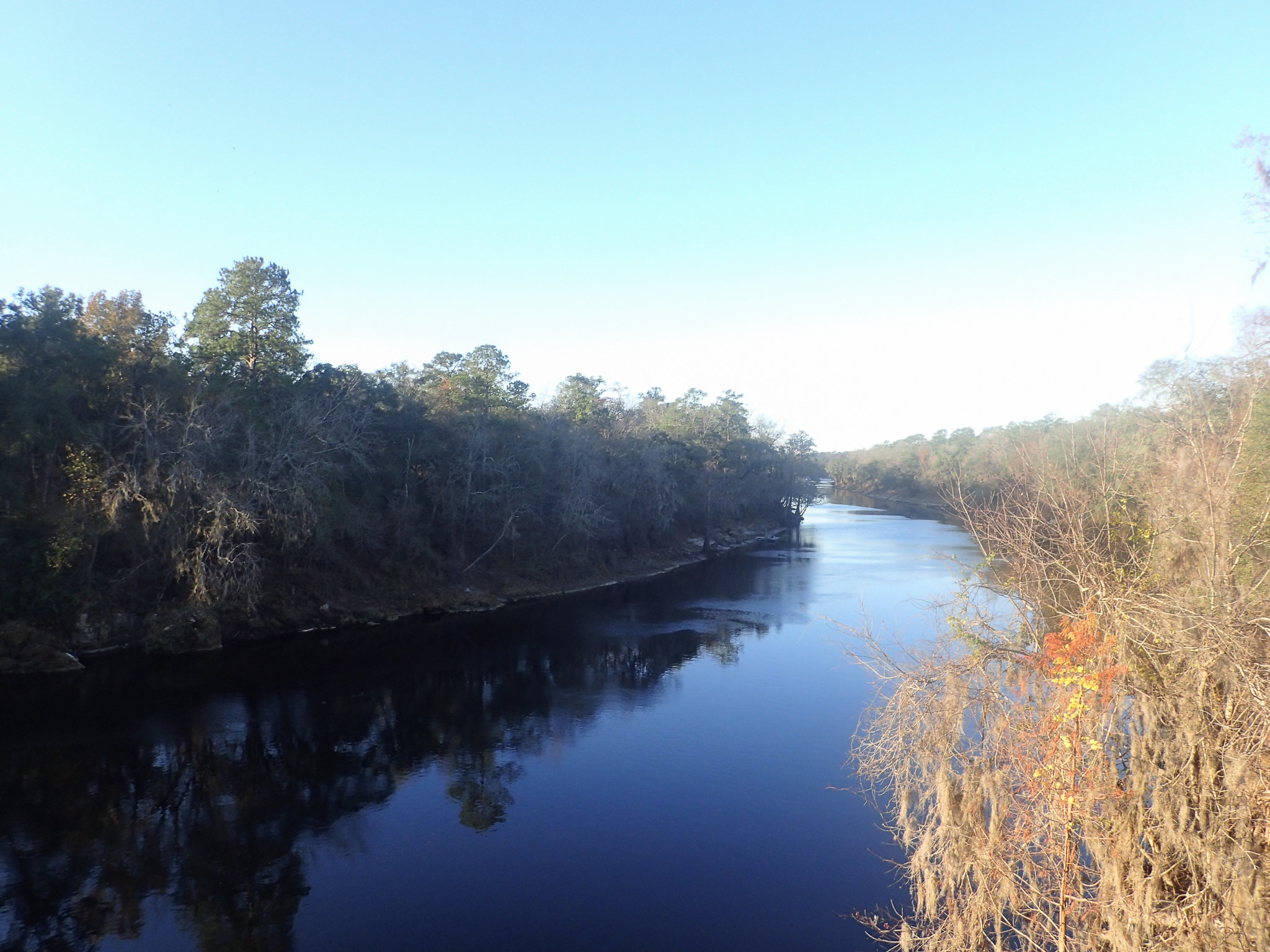 The Suwannee River, Florida