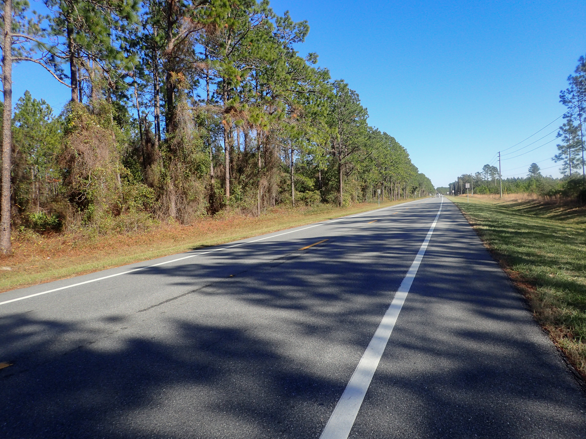 bright and sunny on the road in Florida