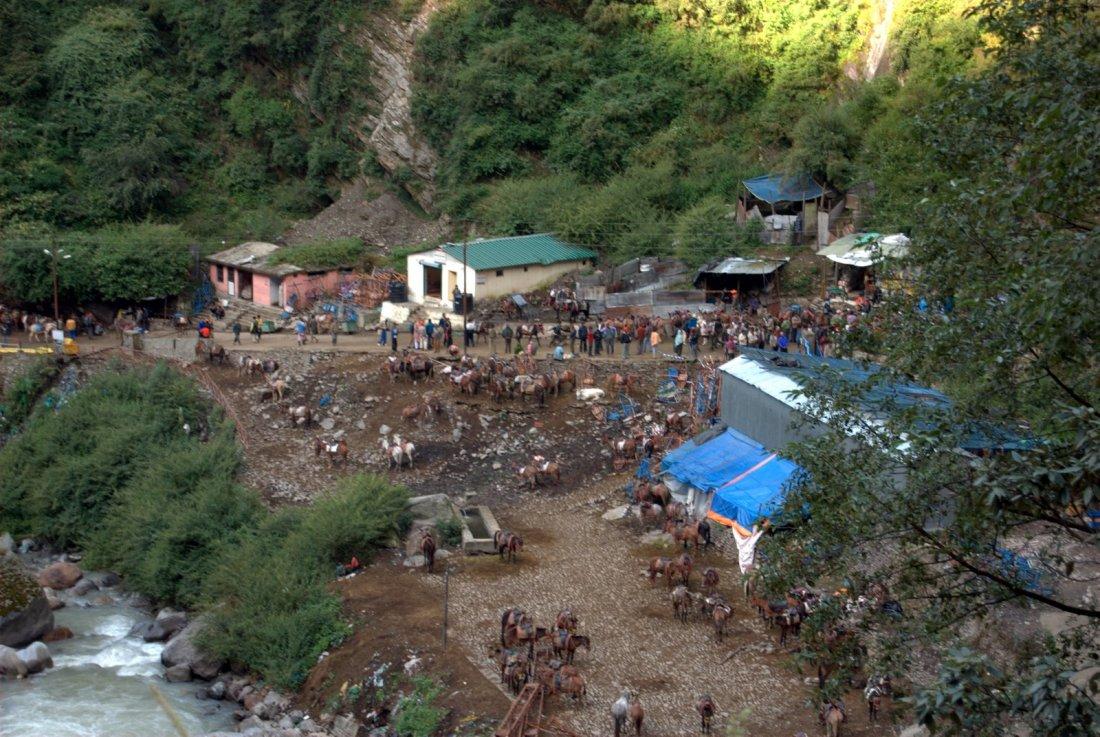 Gauri Kund, verzamelplaats muilezels