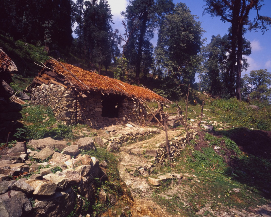 On the trail to Belak Khal, Uttarakhand, India. Trek Day 6.