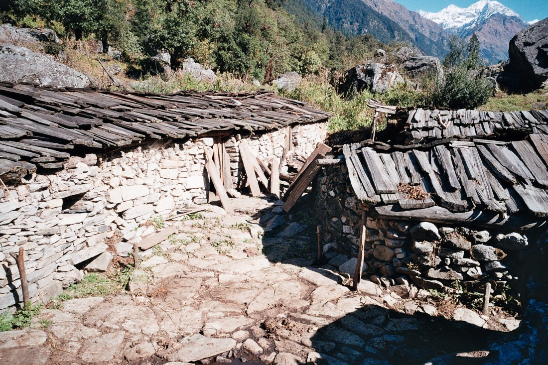 On the trail to Rees, Uttarakhand, India. Trek Day 21