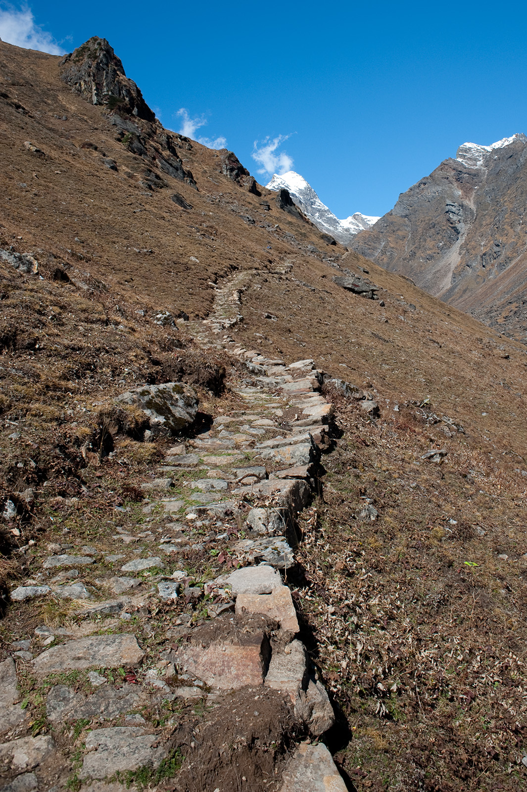 On the trail to Vasuki Tal, Uttarakhand, India. Trek Day 16
