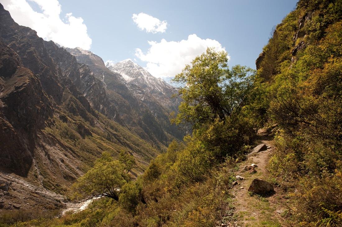 On the trail to Kalyani, Uttarakhand, India. Trek Day 20
