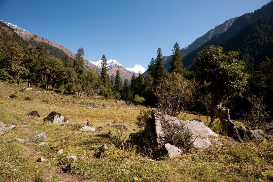 From the campsite at Kalgani, Uttarakhand, India. Trek Day 21