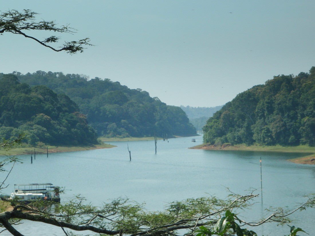 The lake at the Tiger Reserve at Periyar, Kerala, India