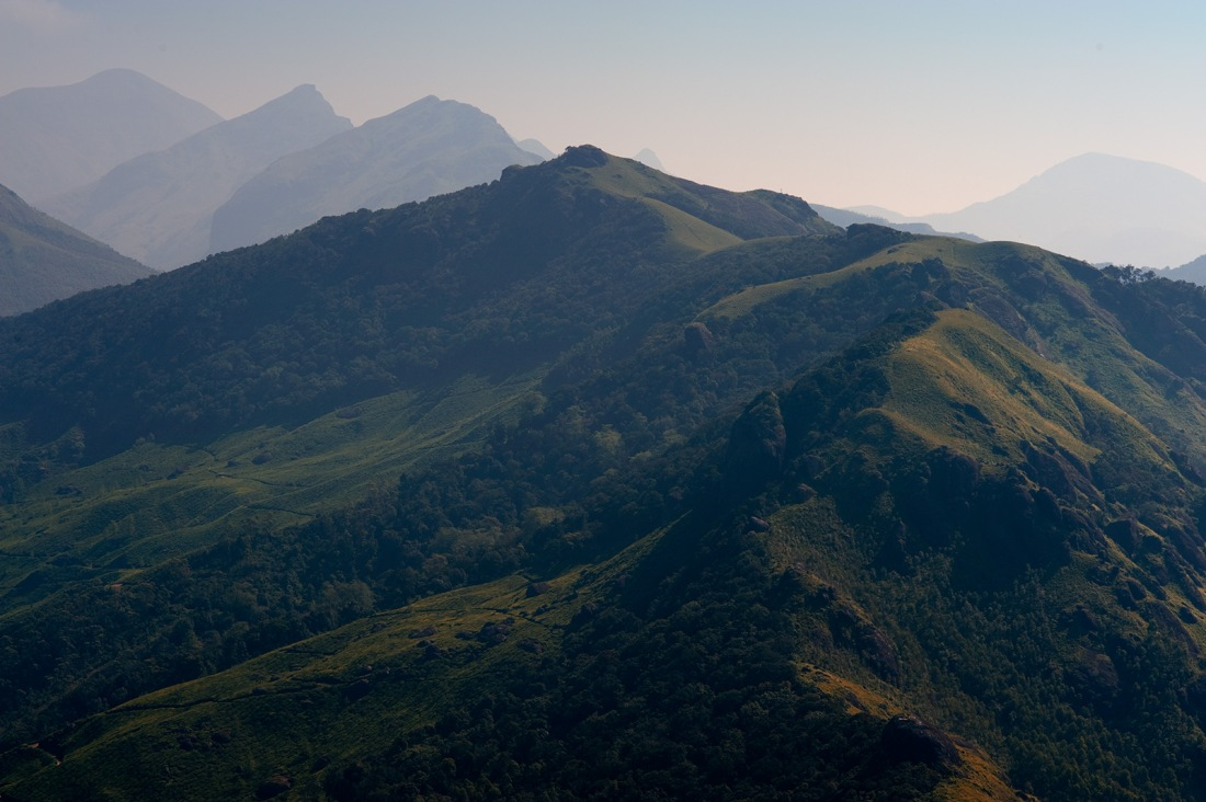 Above Munnar, Kerala, India