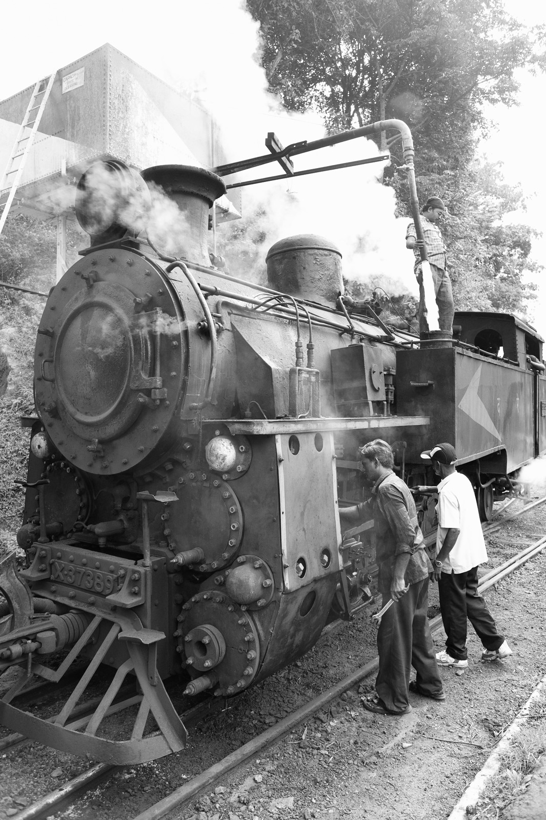 From the Nilgiri Mountain Railway, Tamil Nadu, India.